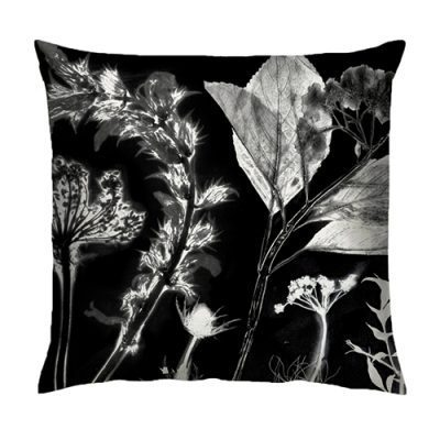 Springs Spectre Cushion