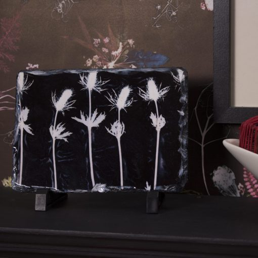 Midnight Gentrified Thistles Slate Art Print, Home Accessory and Gift