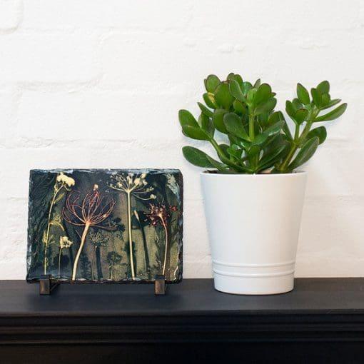Gillian Arnold Friary Meadow Slate Art Print Gift