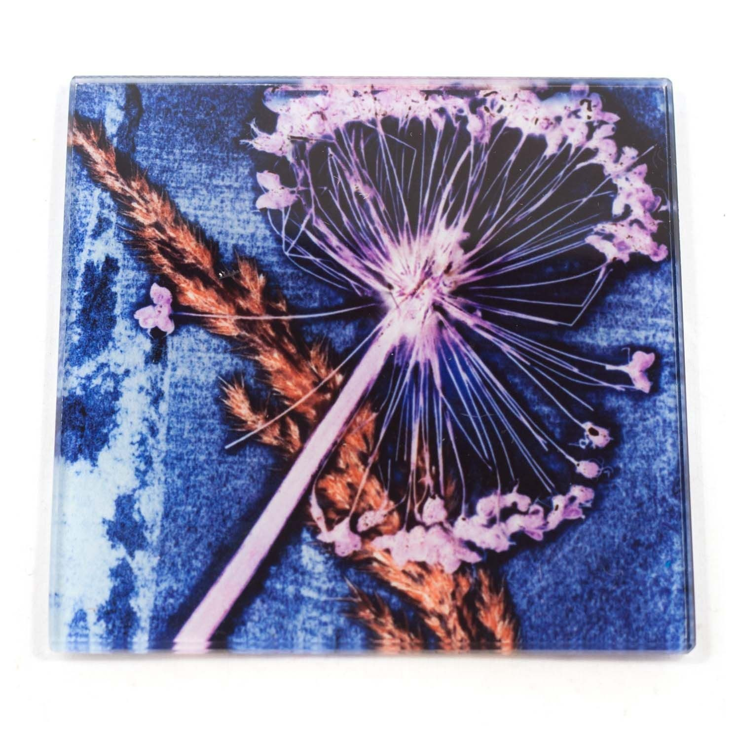 Blue Allium Rush Botanic Style Glass Coaster