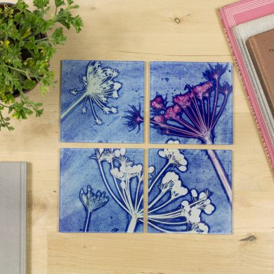 Cow Parsley Blue | White & Blue Set of Glass Coasters