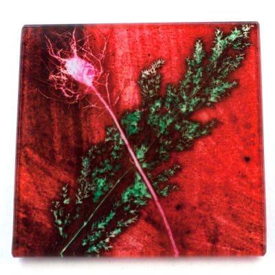 Festive Grass Botanic Style Glass Coaster