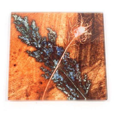 Golden Grass Botanic Style Glass Coaster