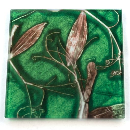 Green Sweet Curves Botanic Style Glass Coaster