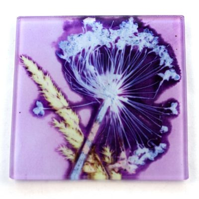 Lilac Allium Rush Botanic Style Glass Coaster