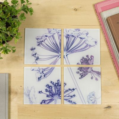 Fennel Canopy | Purple & White Set of Glass Coasters