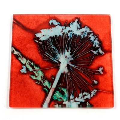 Red Allium Rush Botanic Style Glass Coaster