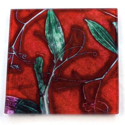 Red Sweet Curves Botanic Style Glass Coaster