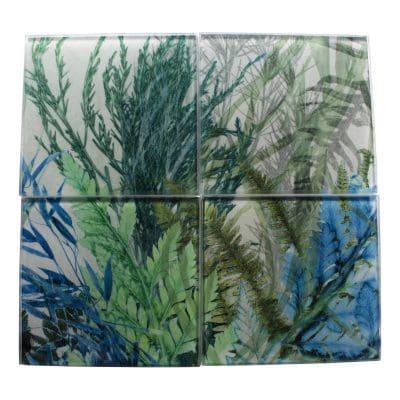 Forage | Green Fern Design Set of Glass Coasters