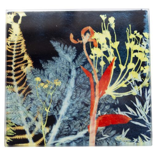 Secret Garden 2   Dark Floral Single Glass Coaster